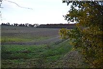 TL5252 : Farming landscape by N Chadwick
