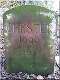 SJ5364 : Chester 1996 boundary stone near Oak Tree Farm, Wood Lane by John S Turner