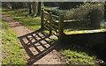 SX8963 : Gates by the path, Cockington by Derek Harper
