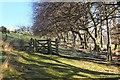 NT2364 : Footpath gate near Woodhouselee by Jim Barton