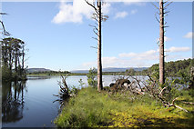 NH9617 : A peaceful loch by Malcolm Neal
