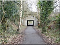 NZ1164 : Hadrian's Cycleway passes under Main Road, Wylam by Oliver Dixon