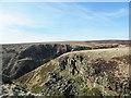 SK2092 : Crag in upper Abbey Brook by Trevor Littlewood