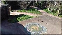 SX9473 : Mules Park, viewing platform by John C