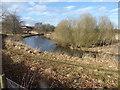 NJ7820 : Upstream River Ury by Stanley Howe
