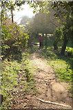 SX9777 : Coast path following Dawlish bridleway 4 by Derek Harper