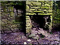 H4074 : Cottage ruins, Mullagharn (interior) by Kenneth  Allen