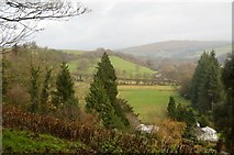 SX4975 : View up the Tavy Valley by N Chadwick