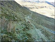 SJ0731 : Faint path below Moel yr Ewig by Richard Law