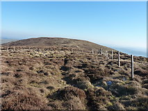 SJ0831 : Fences on the North Top of Godor by Richard Law