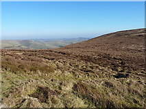 SJ0931 : Moorland NE of the saddle by Richard Law