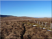 SJ0830 : Fence on the ridge above Cwm Ffynnon by Richard Law