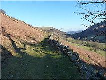 SJ0828 : Hillside track above Ty'n-y-celyn farm by Richard Law
