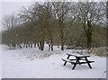 ST6269 : A bit parky for a picnic by Neil Owen