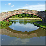 SJ9922 : Bridge No 109 at Great Haywood in Staffordshire by Roger  Kidd