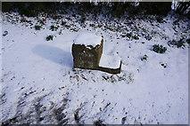 SE9532 : Mile Stone near Weedley by Ian S