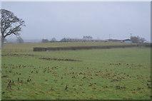 SX9986 : Farm buildings by N Chadwick
