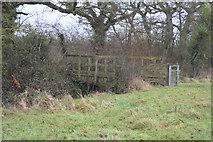 SX9986 : Footbridge by N Chadwick