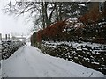 SD9098 : Snowing by the Old Vicarage, Muker by Christine Johnstone