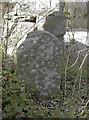 ST6866 : Initialed stone by Neil Owen