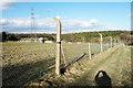 SP8400 : Footpath & Fenceposts by Des Blenkinsopp