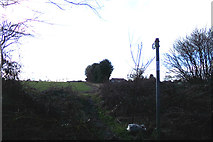 TL1320 : Footpath off Chiltern Green Road by Adrian Cable