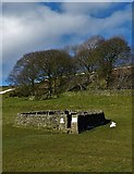 SK2276 : The Riley Graves enclosure near Eyam by Neil Theasby