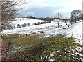 TR2042 : Sheep grazing amongst the snow by John Baker