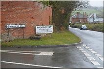 SY0087 : Entering Woodbury by N Chadwick