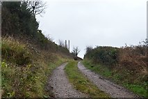 SY0087 : Track off Woodbury Rd by N Chadwick