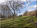 SK4592 : Footpath through urban green space by Graham Hogg