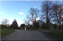 TL1824 : Church Lane, Preston by Adrian Cable