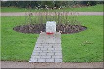 SX8960 : War Memorial, Cliff Rd by N Chadwick