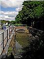SK2103 : Sidepond at Glascote Top Lock near Tamworth, Staffordshire by Roger  Kidd