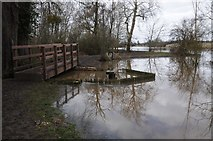 SO8843 : Footbridge over the weir, Croome Park by Philip Halling