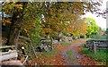 SO6869 : Farm track on Lambswick Farm by Martin Wynne