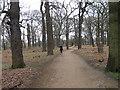 TQ2173 : Richmond Park by Alex McGregor