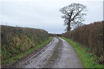 SX9988 : Moor Lane by N Chadwick