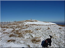 SJ0732 : Cadair Berwyn Cairn I by Richard Law