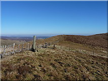 SJ0833 : Standing stone below Tomle by Richard Law