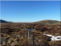 SJ0833 : Towards Cadair Bronwen from Tomle by Richard Law