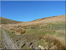 SJ0832 : The bridleway leaves the track by Richard Law