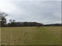 SP9532 : Footpath across the deer park at Woburn Abbey by Rob Purvis