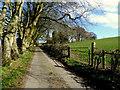 H5270 : Bencran Road, Bancran by Kenneth  Allen