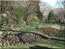 TQ2979 : Floral display, St James's Park by Rudi Winter