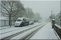 SX9065 : Blizzard, Cricketfield Road, Torre by Derek Harper
