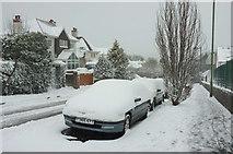 SX9065 : Snow-covered cars, Barton Road, Torre by Derek Harper