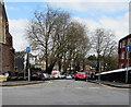 ST2987 : Tree-lined Bryngwyn Road, Newport by Jaggery