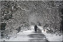 SS9712 : Tiverton : Footpath by Lewis Clarke