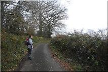 SX4975 : Walker on West Devon Way by N Chadwick